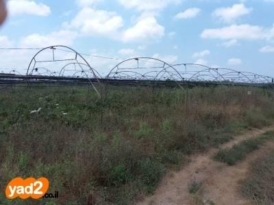 שונות חממה משומשת אפשרי גם קשתות ציוד לעסקים לחקלאות יד שניה - ad KT-28